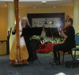 Harp and violin music Chicago suburbs Glen Ellyn, Naperville, Hinsdale